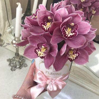 Купить Розовые орхидеи | Доставка цветов в Москве
