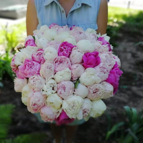 Красивый букет цветов пионы