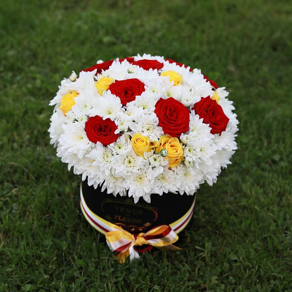 Летние хризантемы Татьянин День Красные Venus in Fleurs
