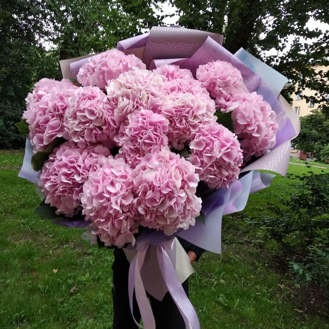 Букет розовых гортензий Гортензии Розовые Venus in Fleurs