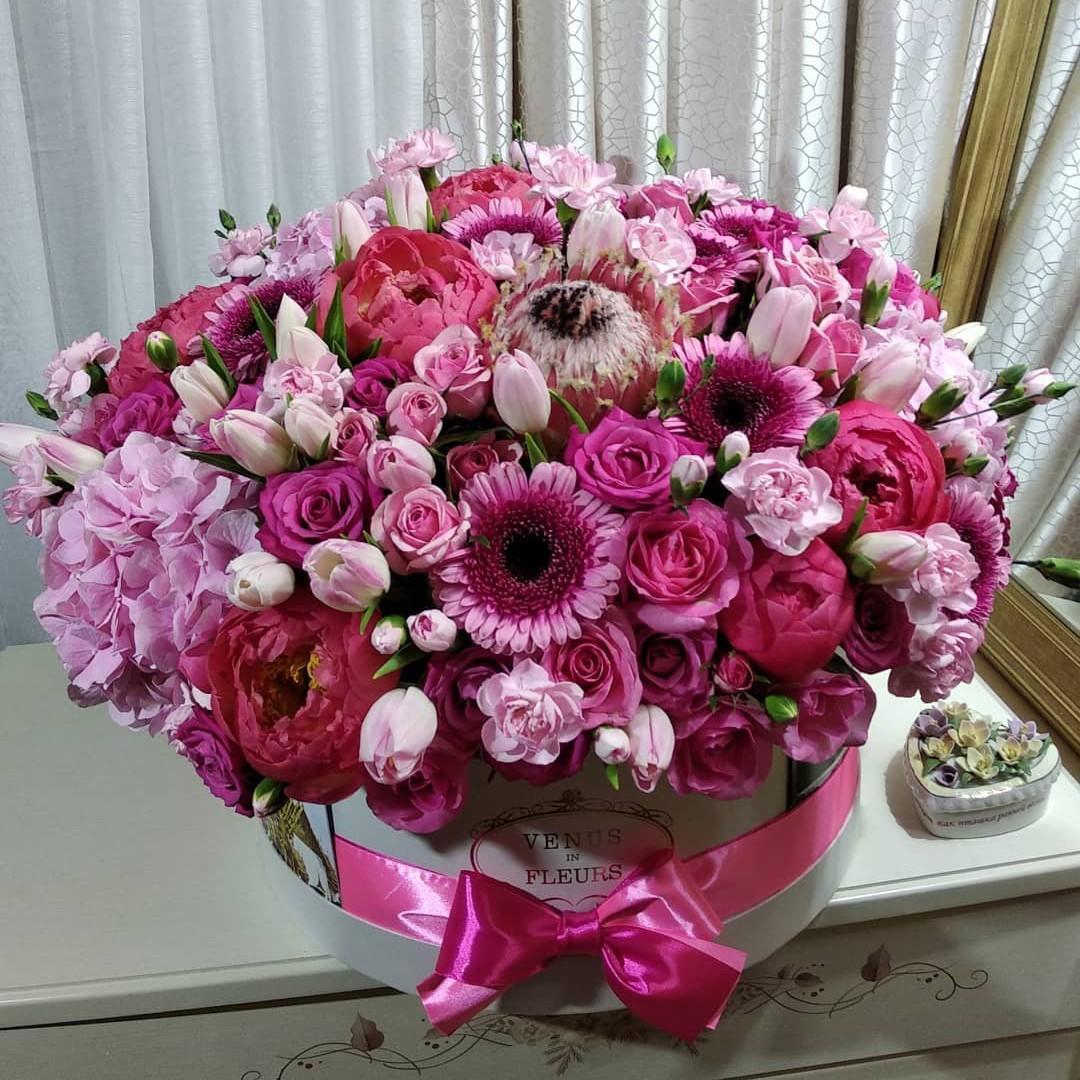 101 роза - нежное прикосновение 101 роза в коробке Красные Venus in Fleurs