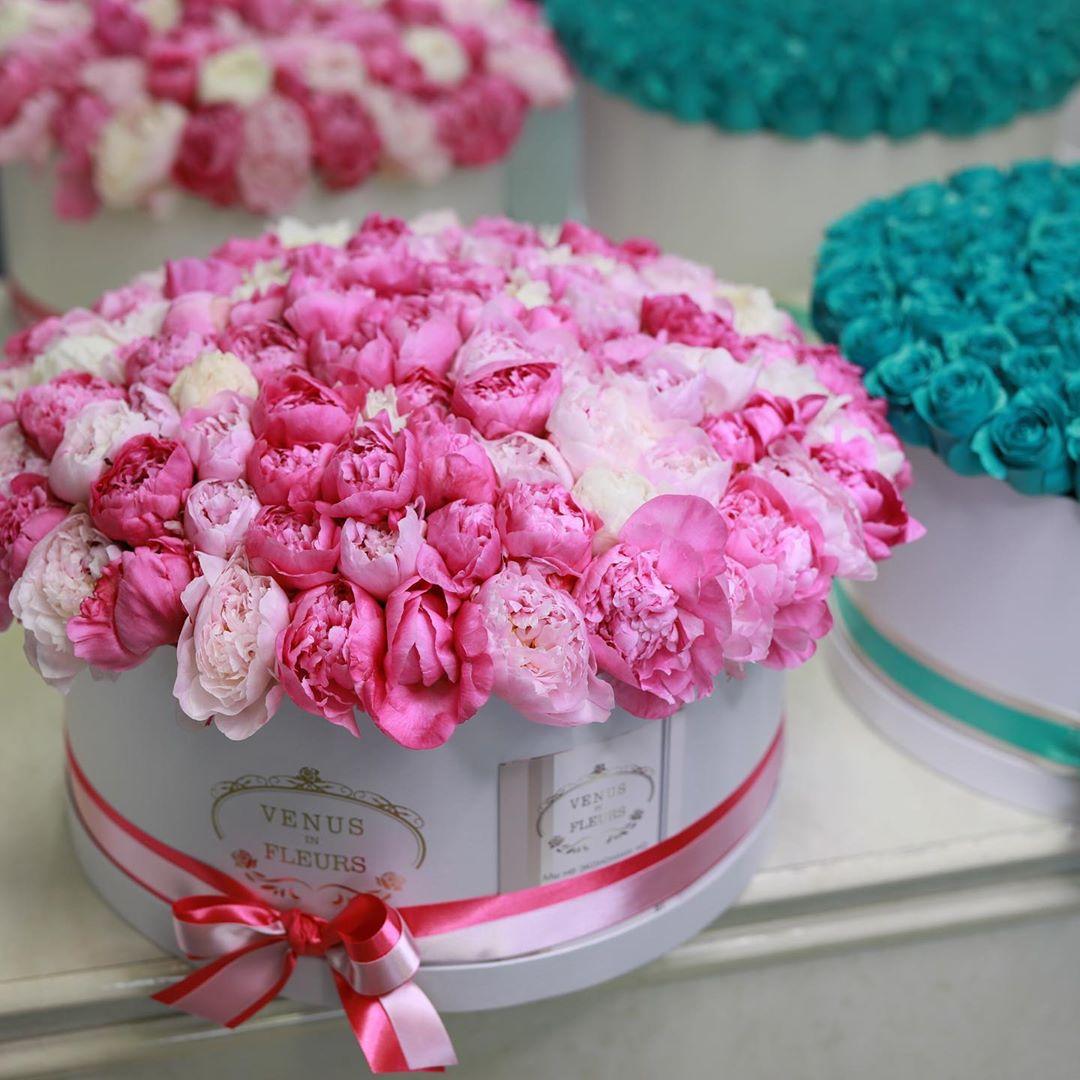 101 пион в коробке 101 роза в коробке Розовые Venus in Fleurs