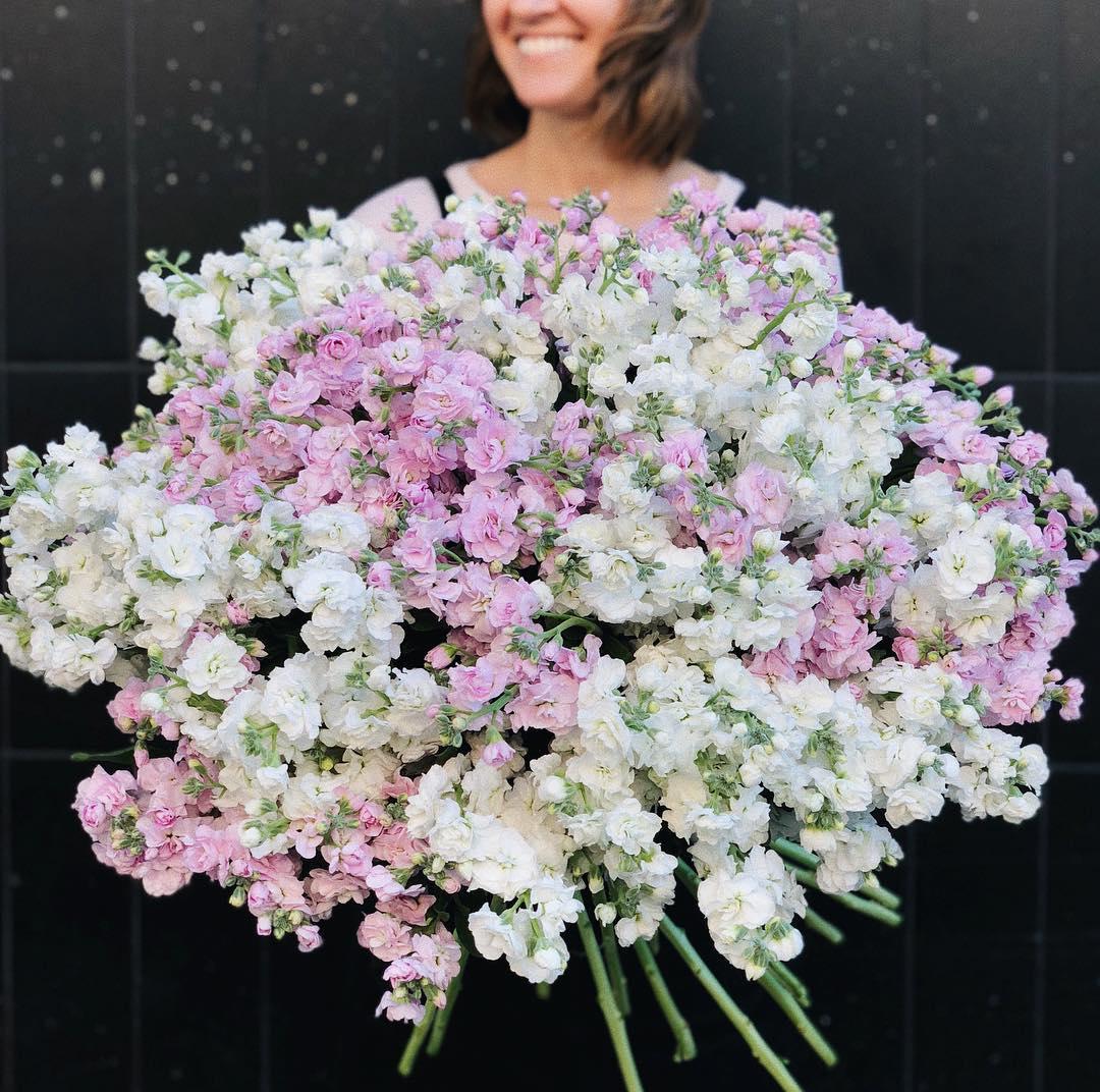 101 маттиола в букете Букет из 101 розы Venus in Fleurs