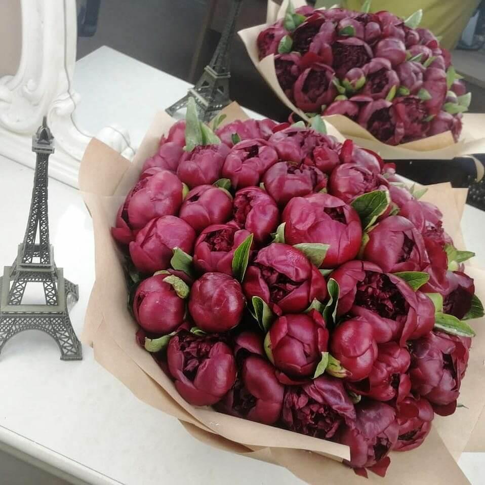51 пион бордовый в букете Букет из 51 розы Бордовые Venus in Fleurs