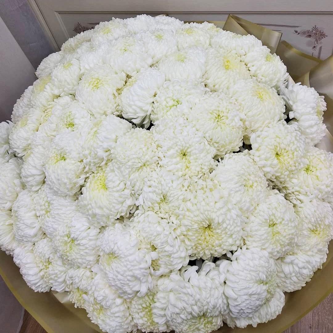 51 большая хризантема в букете Букет из 51 розы Белые Venus in Fleurs