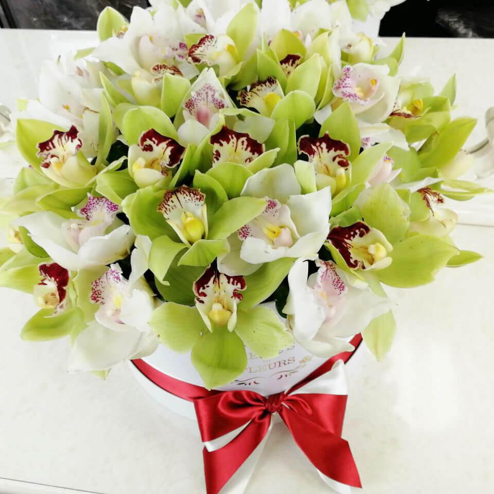 25 бело-зеленых орхидей в коробке 25 роз в коробке Venus in Fleurs