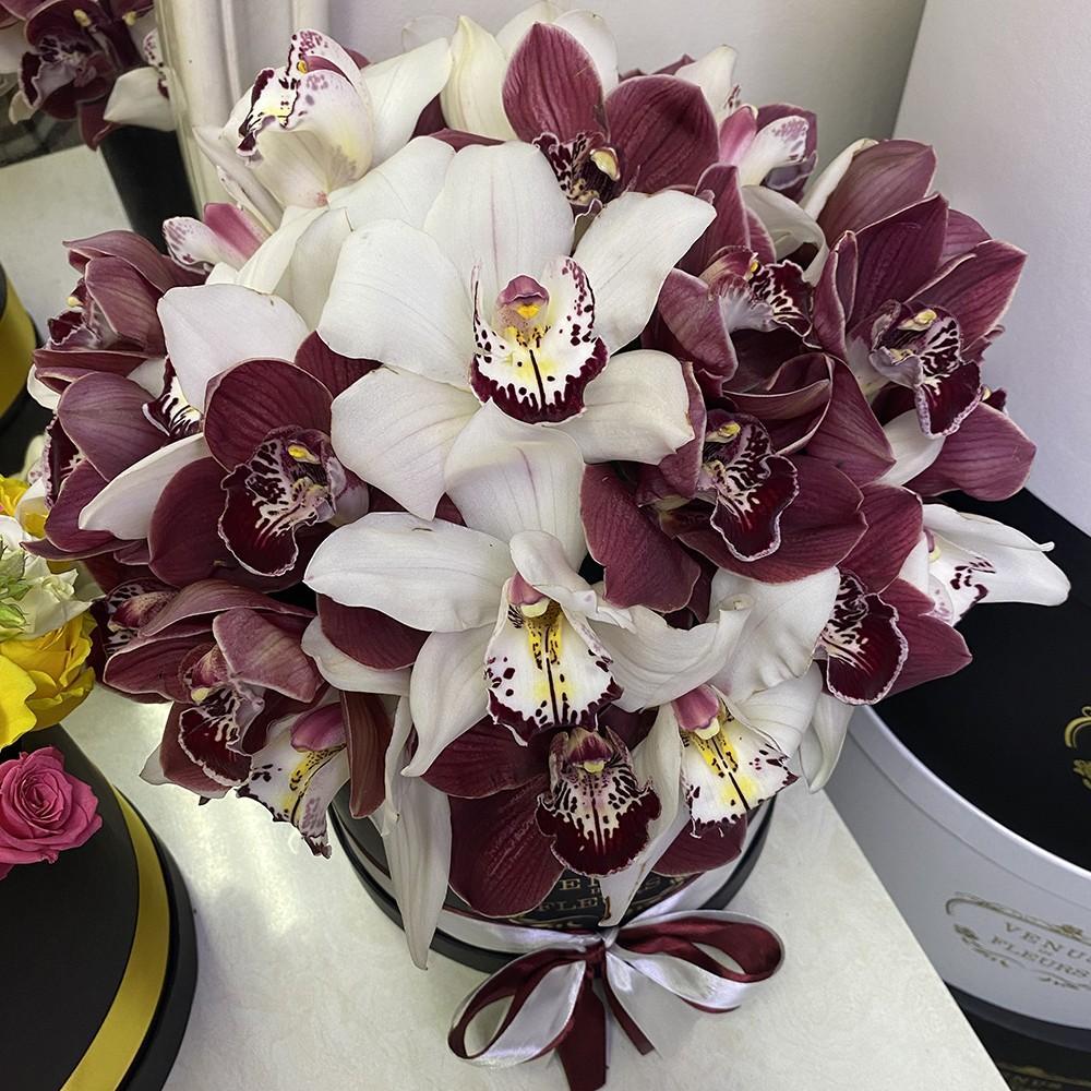 25 бело-розовых орхидей в коробке 25 роз в коробке Белые Venus in Fleurs