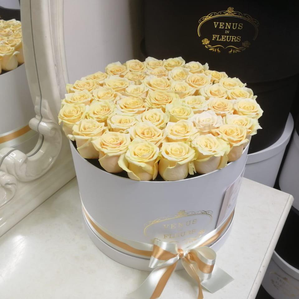 25 кремовых роз в коробке 25 роз в коробке Кремовые