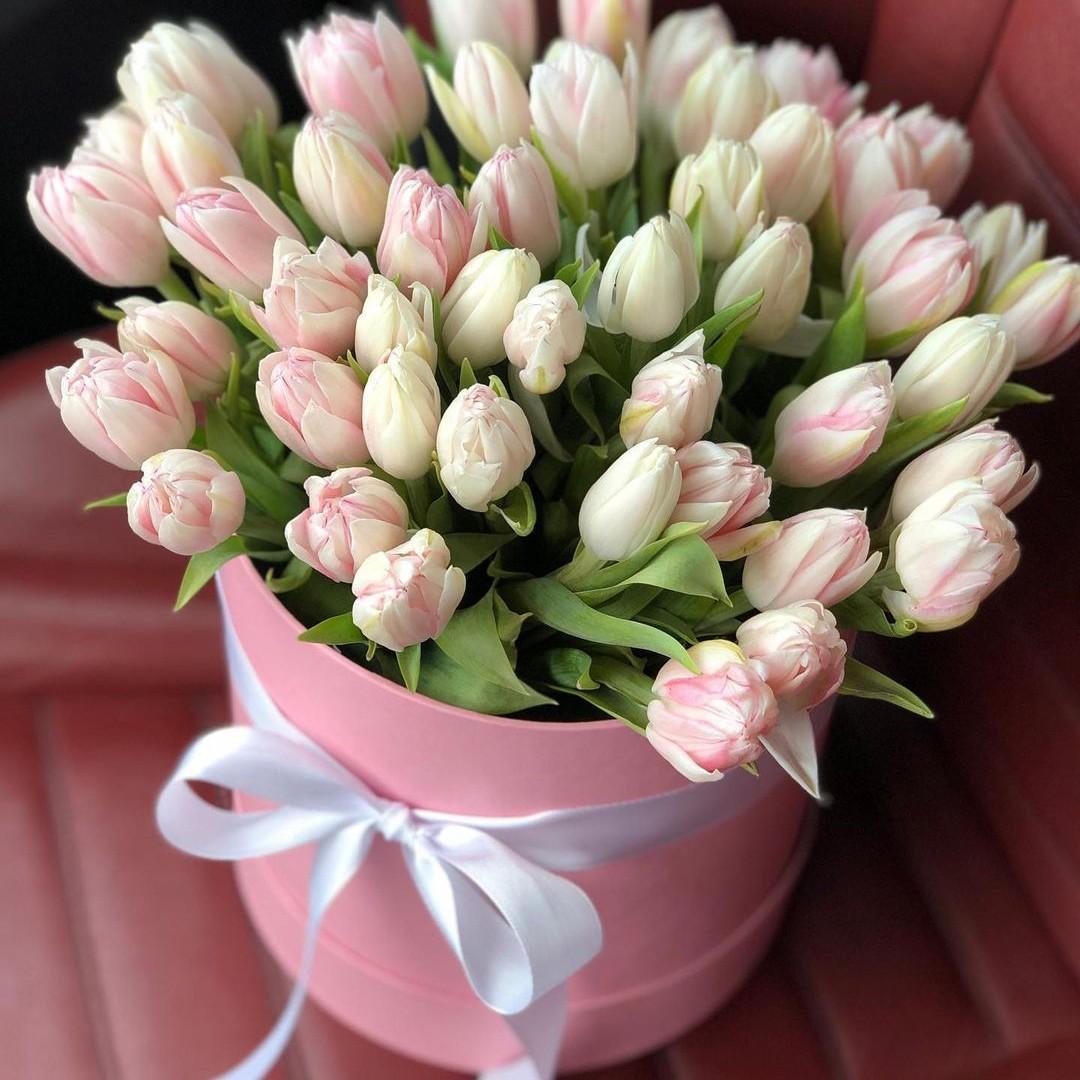 51 нежный тюльпан в коробке Цветы в коробке Розовые Venus in Fleurs