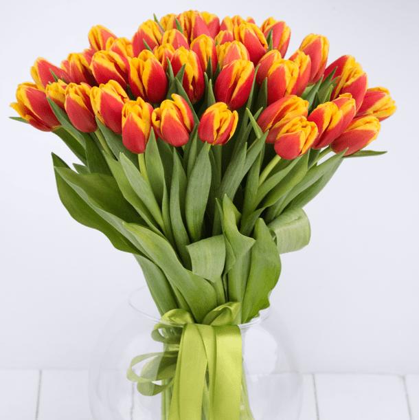 25 красно-желтых тюльпанов в букете Цветы в коробке Красные Venus in Fleurs