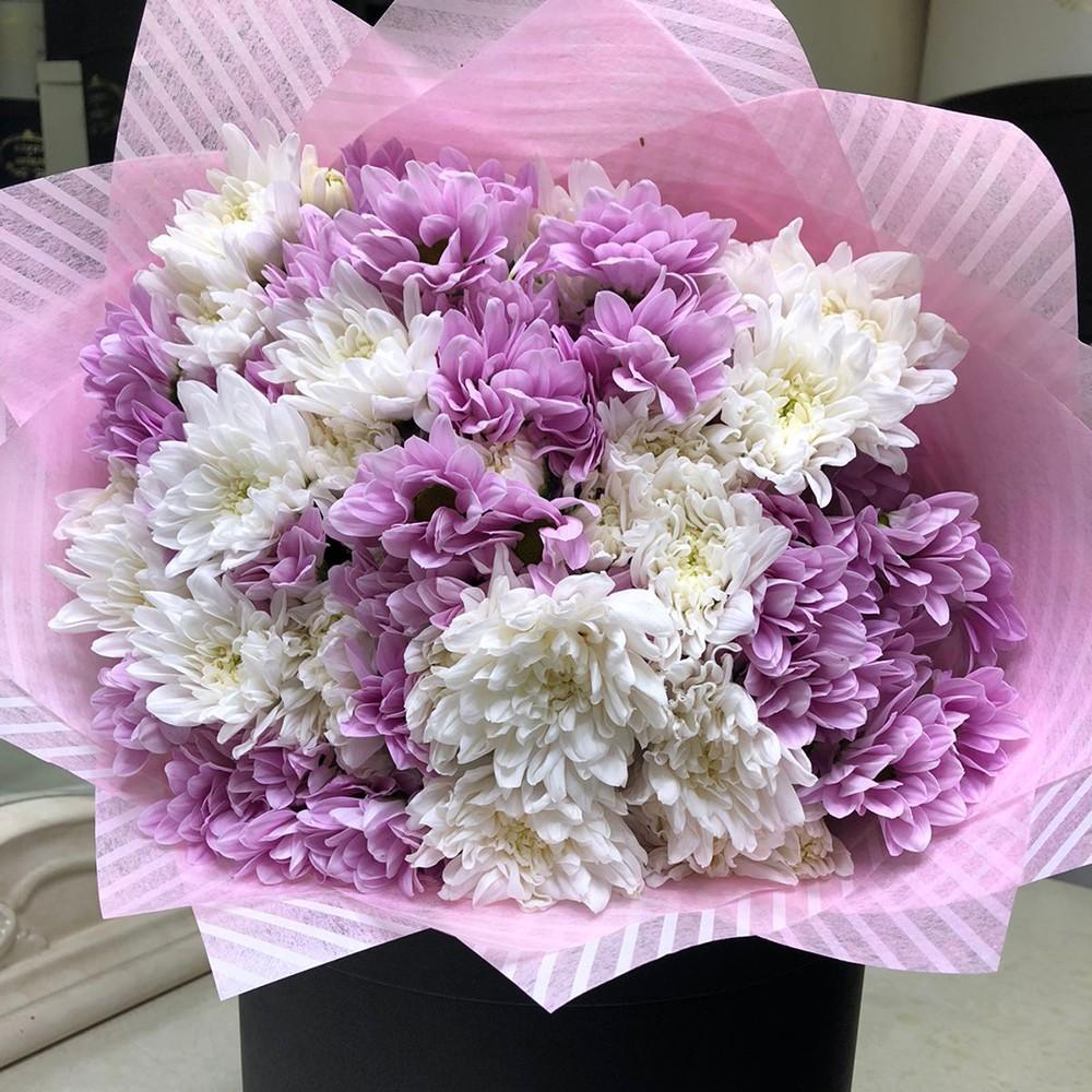 29 бело-розовых хризантем в букете Хризантемы Розовые Venus in Fleurs