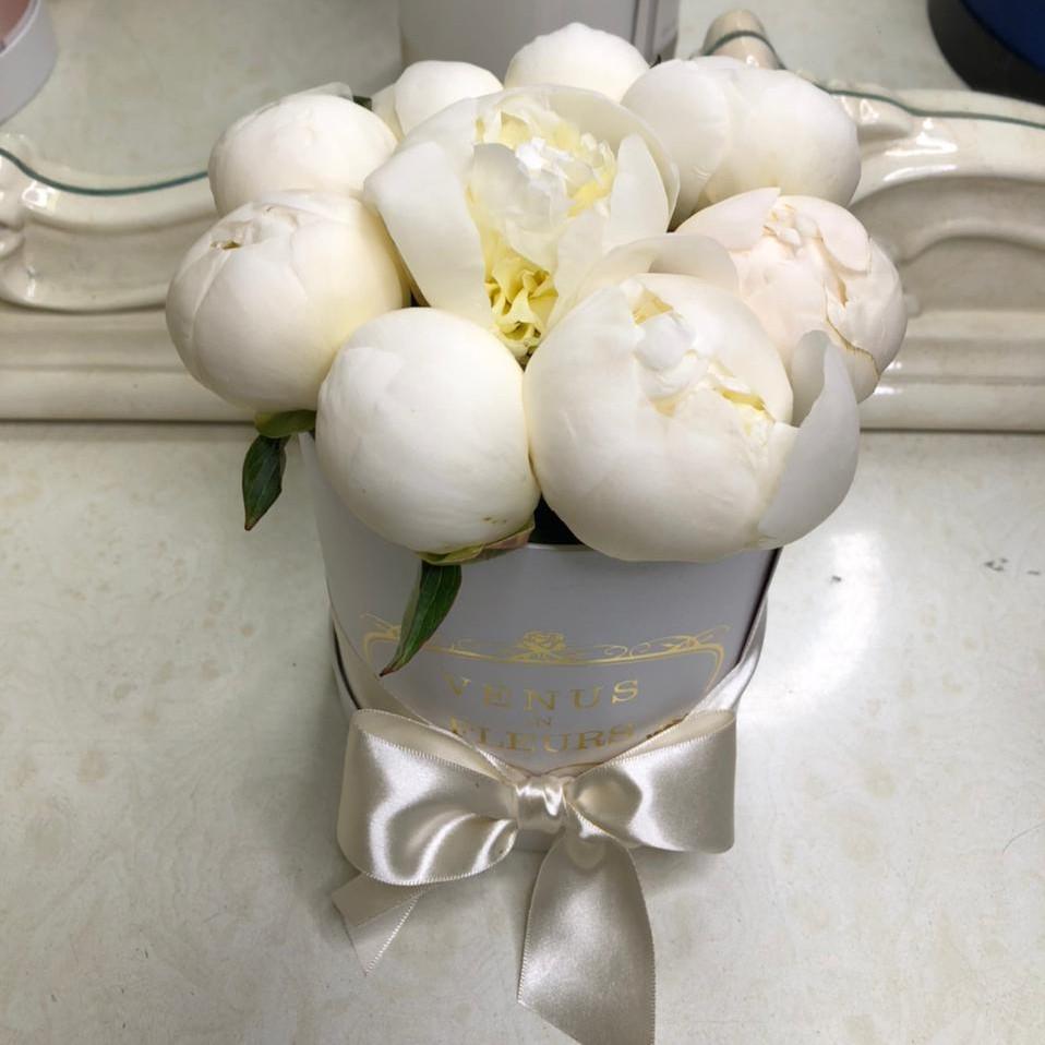 9 белых пионов в коробке Цветы в коробке Белые