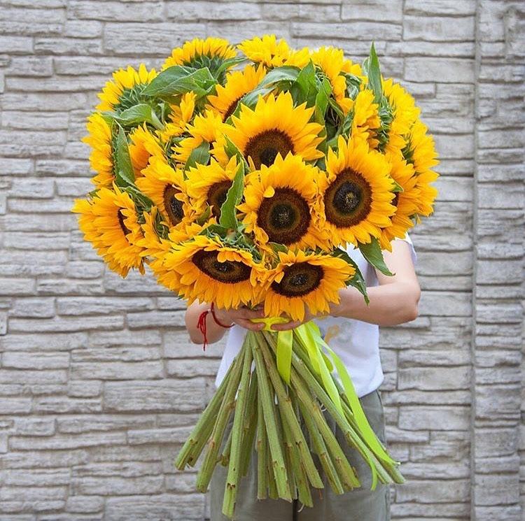 29 подсолнухов в букете Подсолнухи Желтые Venus in Fleurs