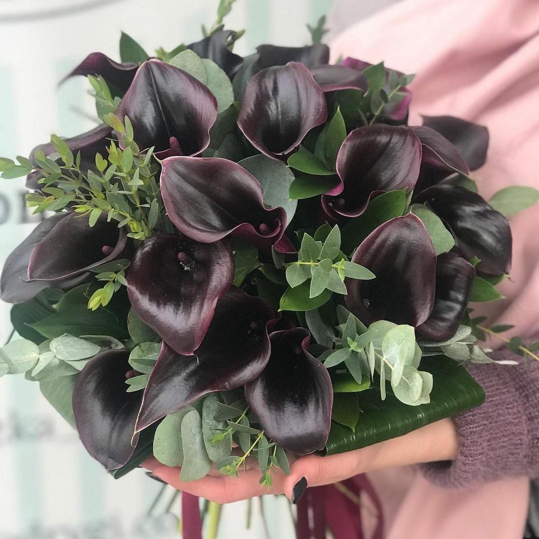 19 черных калл с зеленью Черные Venus in Fleurs