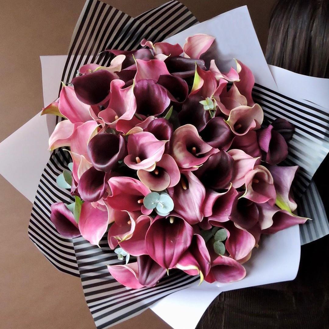 29 бордовых калл в букете Бордовые Venus in Fleurs