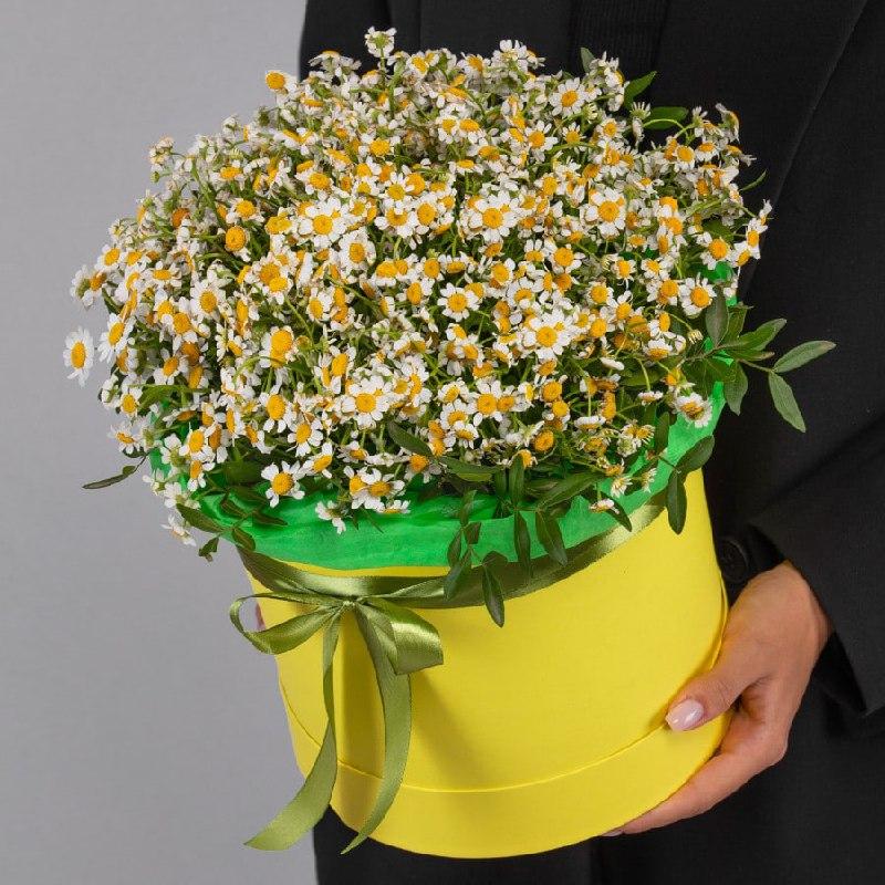 25 кустовых ромашек в коробке Ромашки Белые