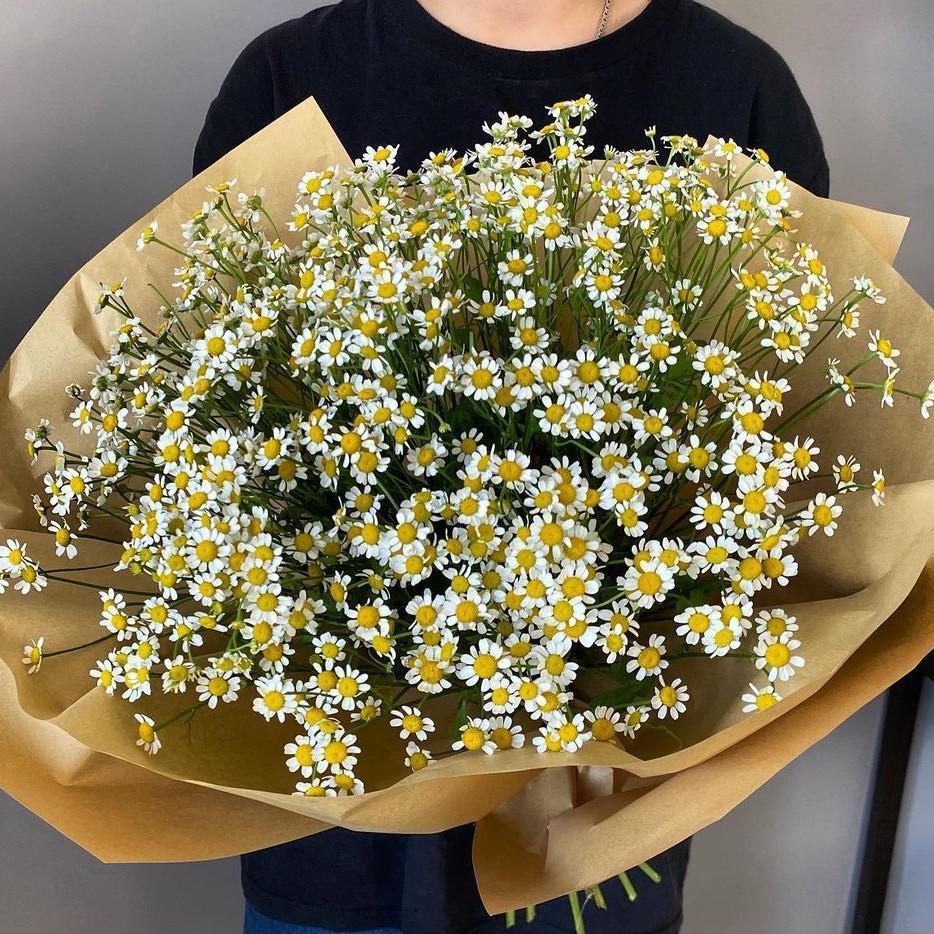 19 кустовых ромашек в букете Ромашки Белые