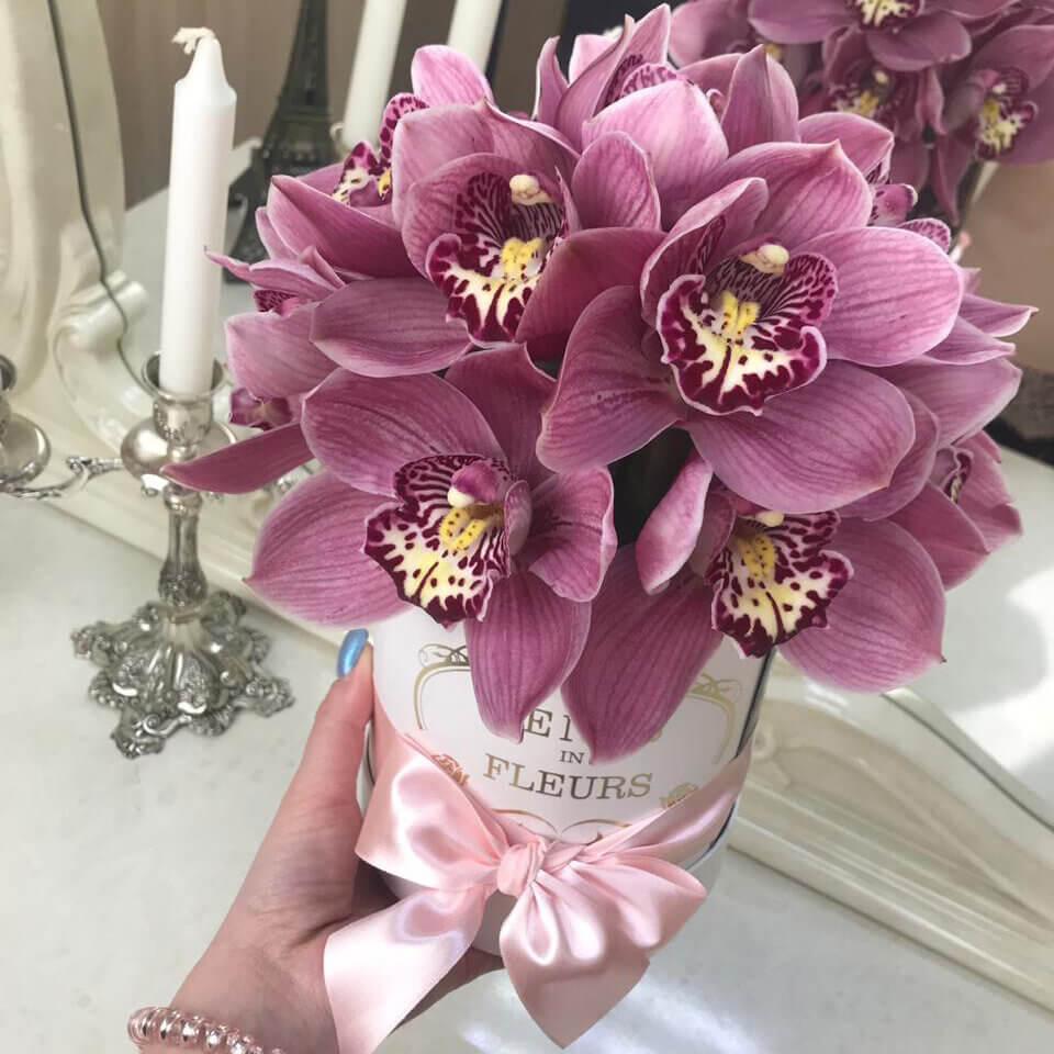 Розовые орхидеи Бизнес-букеты Фиолетовые