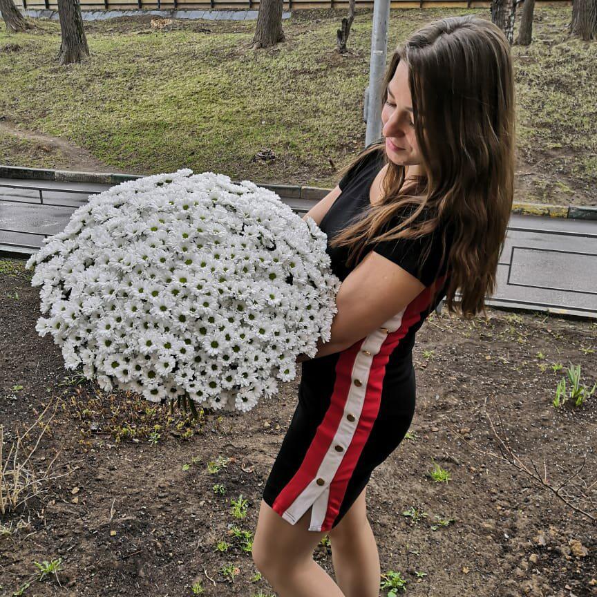 Букет маленьких хризантем от 29 шт. Букеты Белые