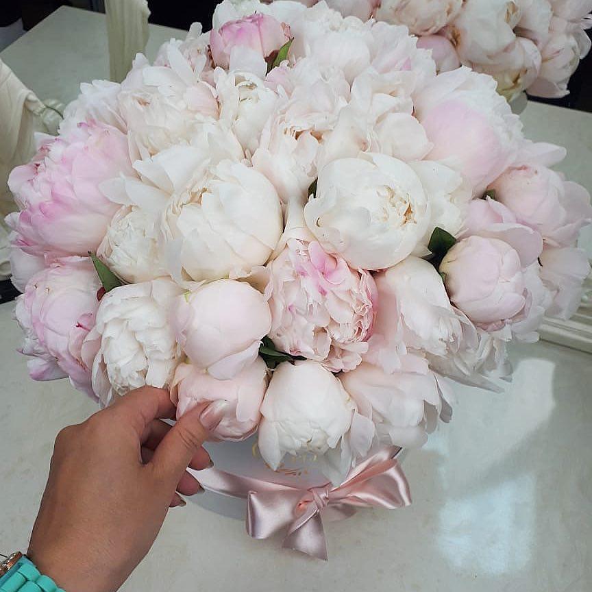 Белые пионы в коробке Цветы в коробке Белые Venus in Fleurs