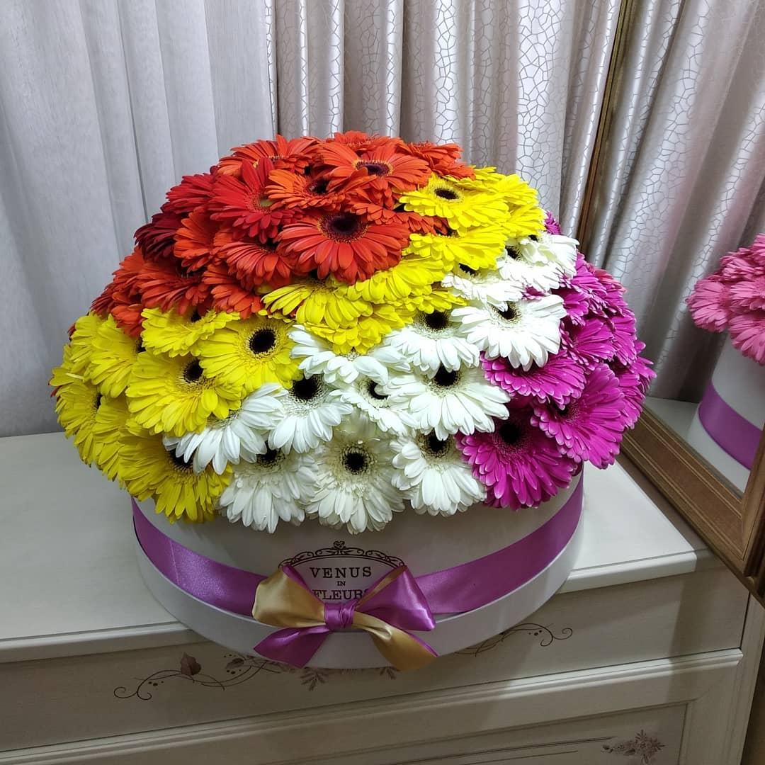 Герберы в коробке Цветы в коробке Красные Venus in Fleurs