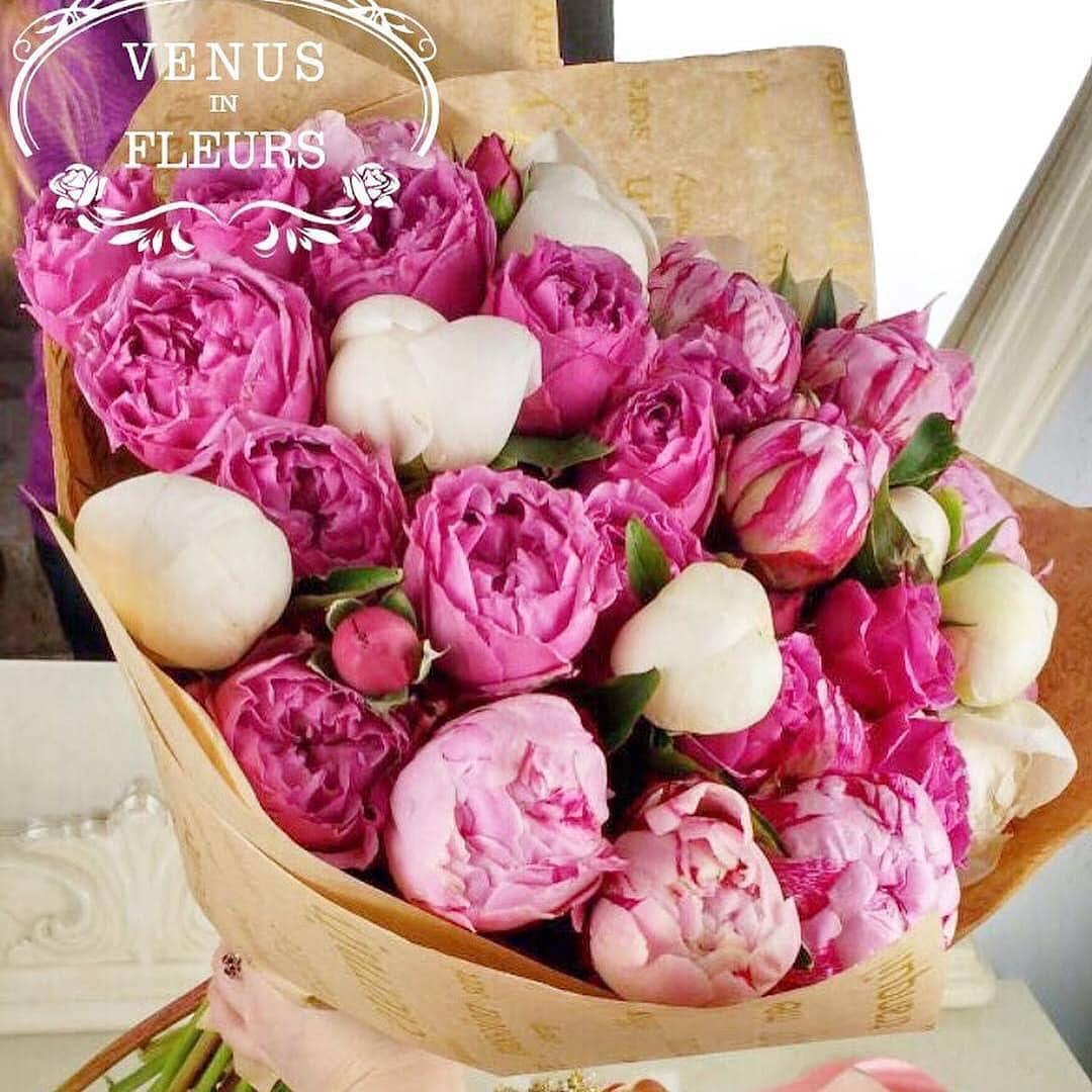 Пионы и пионовидные розы Букеты Розовые Venus in Fleurs
