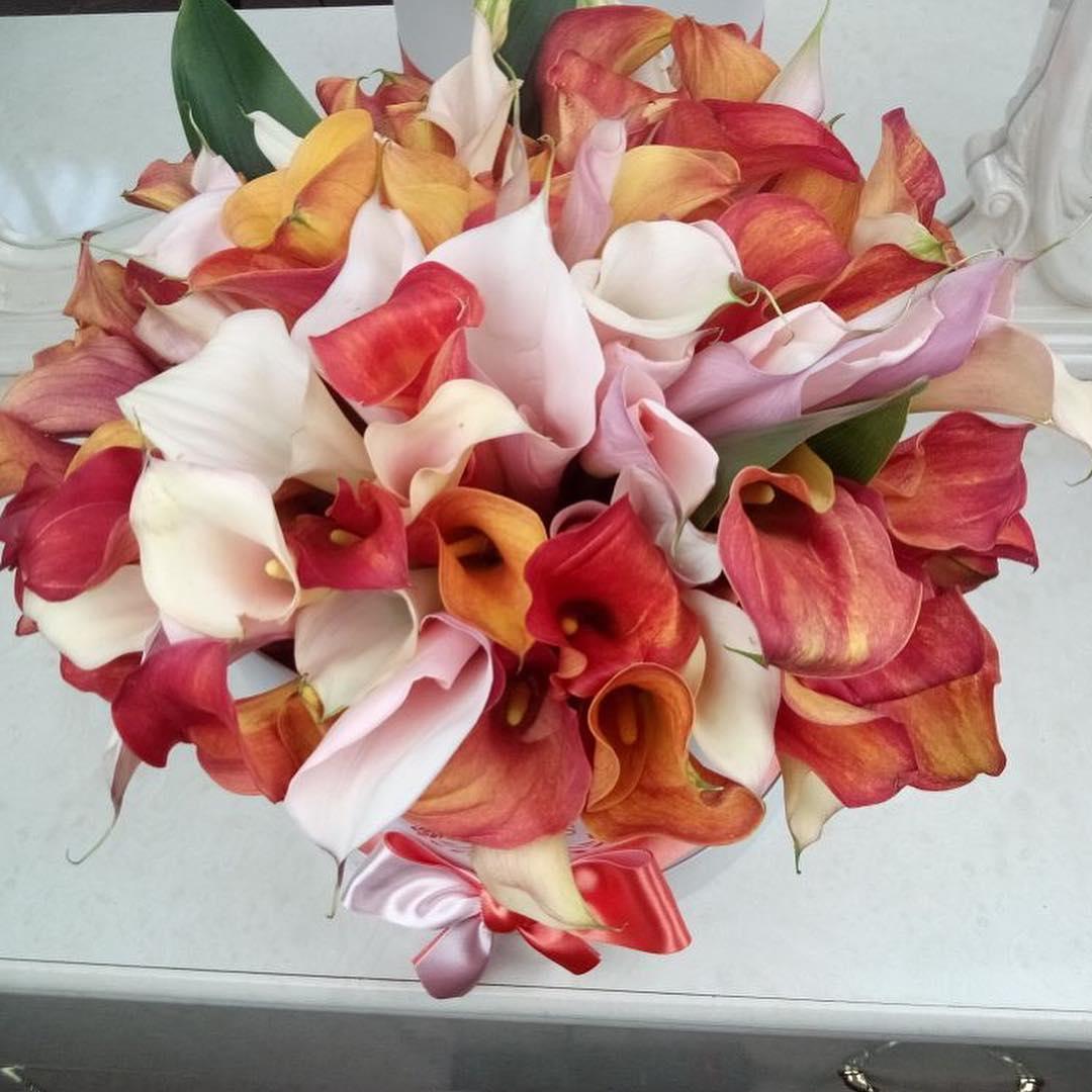 Букет красных калл Цветы в коробке Красные Venus in Fleurs
