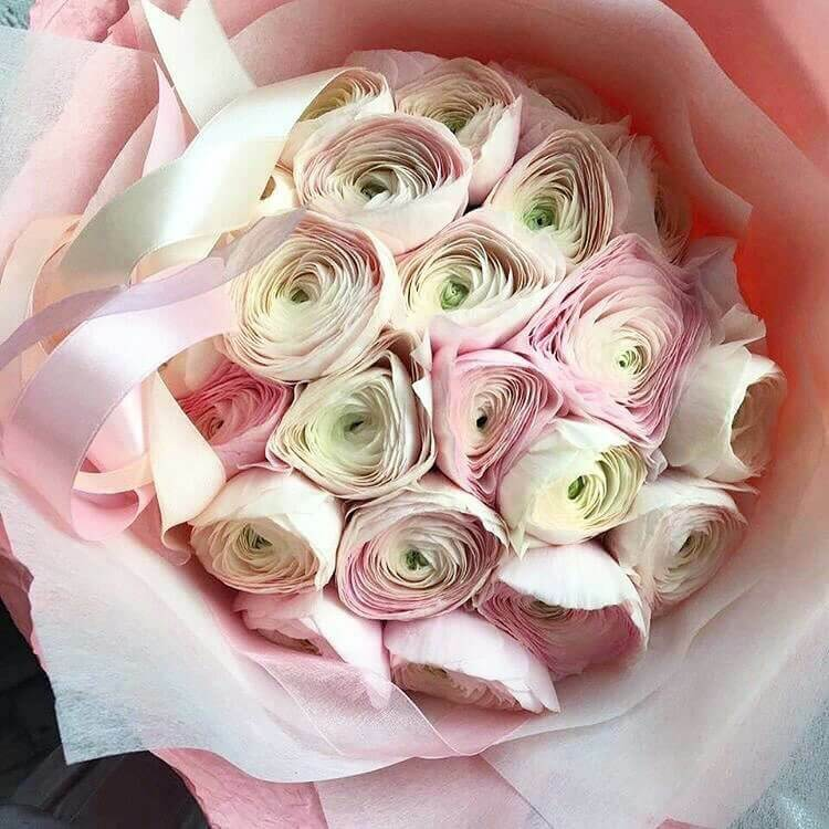Букет ранункулюсов Ранункулюсы Розовые