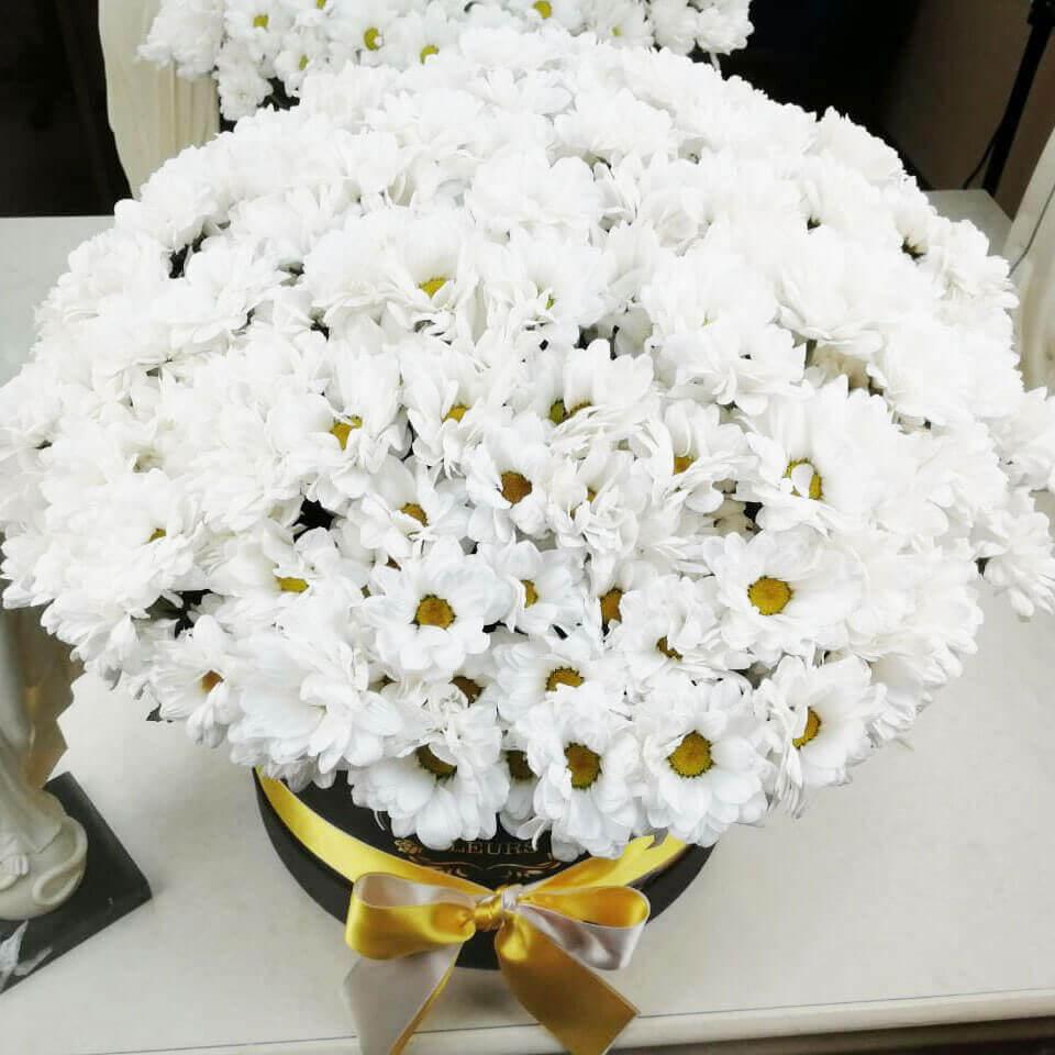 Хризантемы в коробке Бизнес-букеты Белые Venus in Fleurs