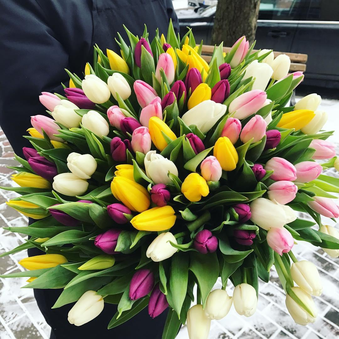 Бело желтый букет тюльпанов Букеты Красные Venus in Fleurs