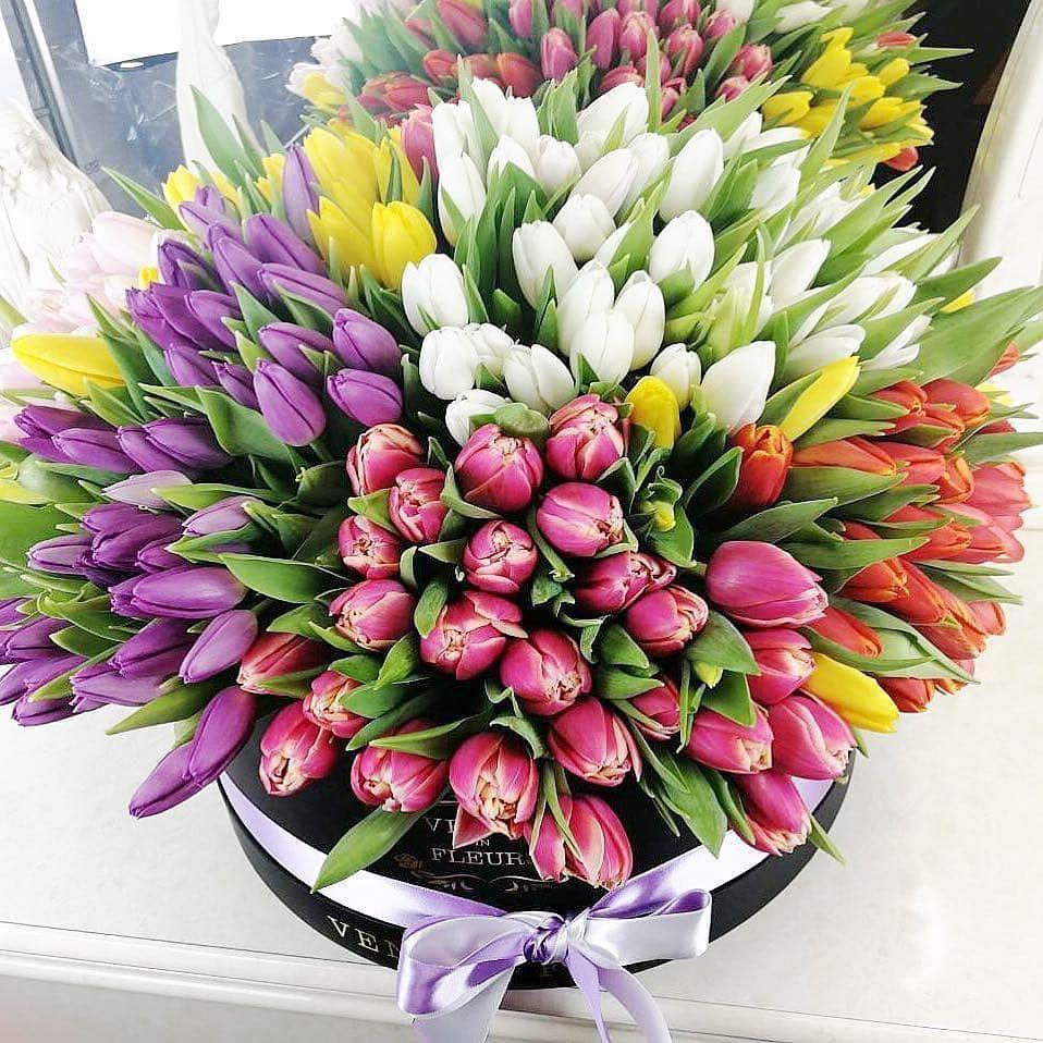 Большой букет тюльпанов Тюльпаны Красные Venus in Fleurs