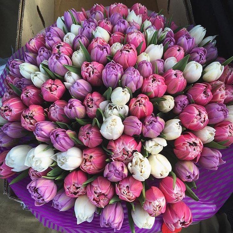 Букет розовых тюльпанов Бизнес-букеты Розовые Venus in Fleurs