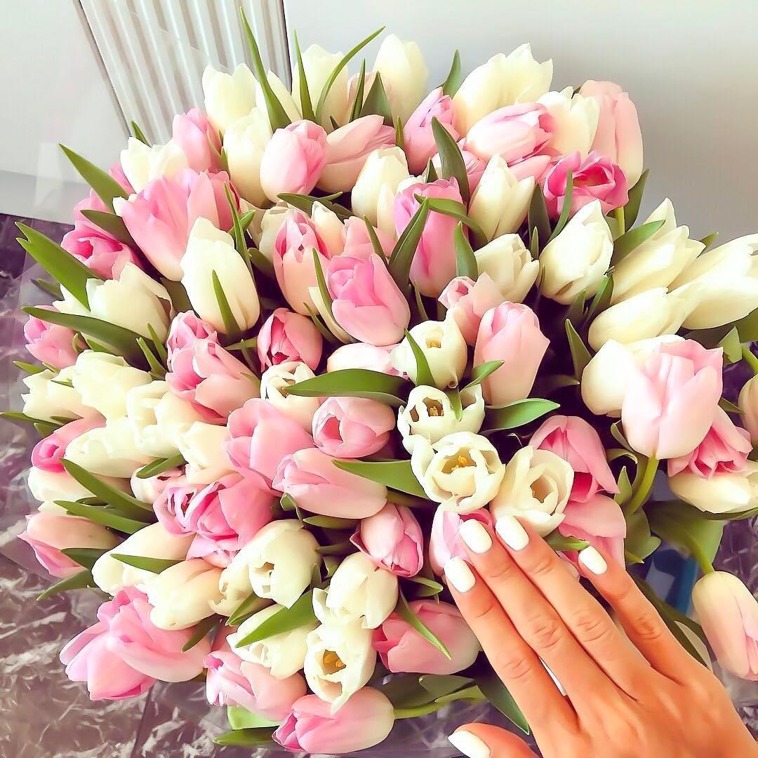 Нежные тюльпаны Букеты Розовые Venus in Fleurs