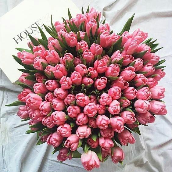 Шикарный букет тюльпанов Букеты Розовые Venus in Fleurs