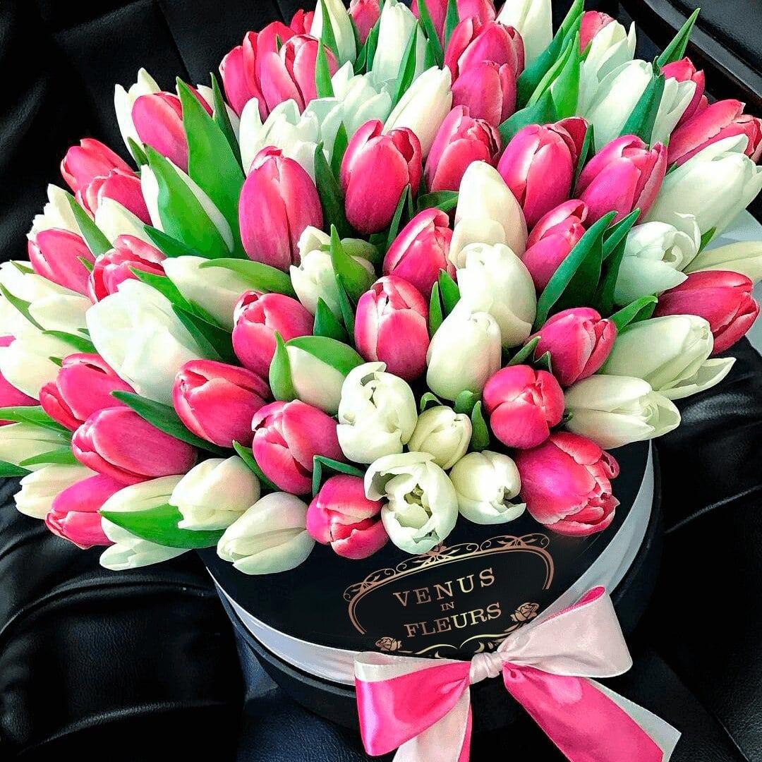 Тюльпаны в коробке Тюльпаны Розовые Venus in Fleurs